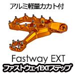 PROMOTO Billet(Fastway)EVO4ステップ