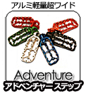 PROMOTO Billet(Fastway)Adventureステップ